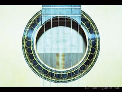 パコ・デ・ルシアギター 2001 ホール